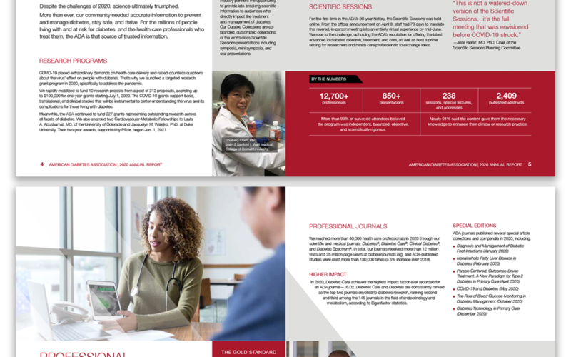 Annual Report - Graphic Design Portfolio Sample